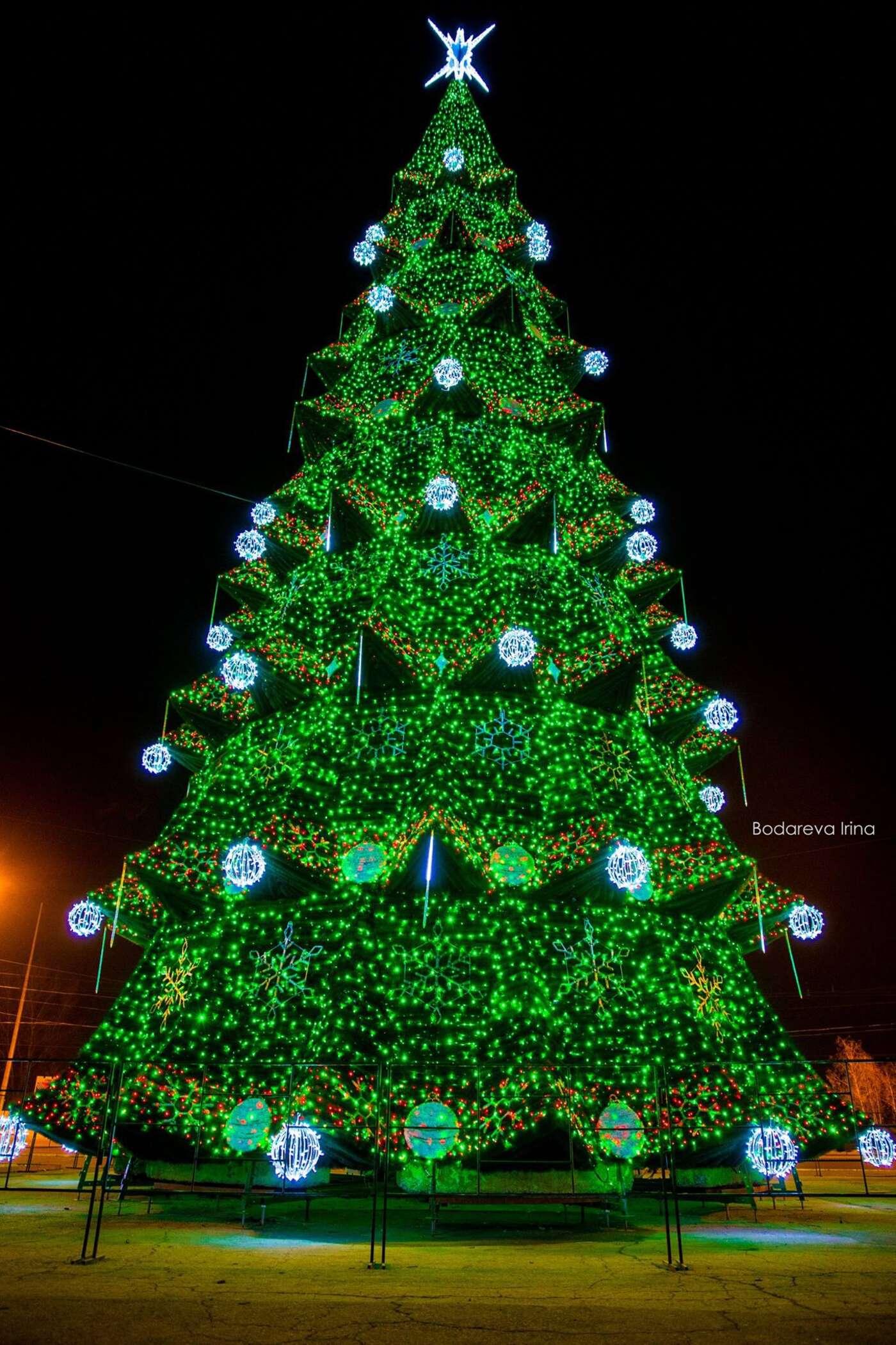 Der Weihnachtsbaum.Die Chișinăueni Und Ihr Weihnachtsbaum Youthreporter