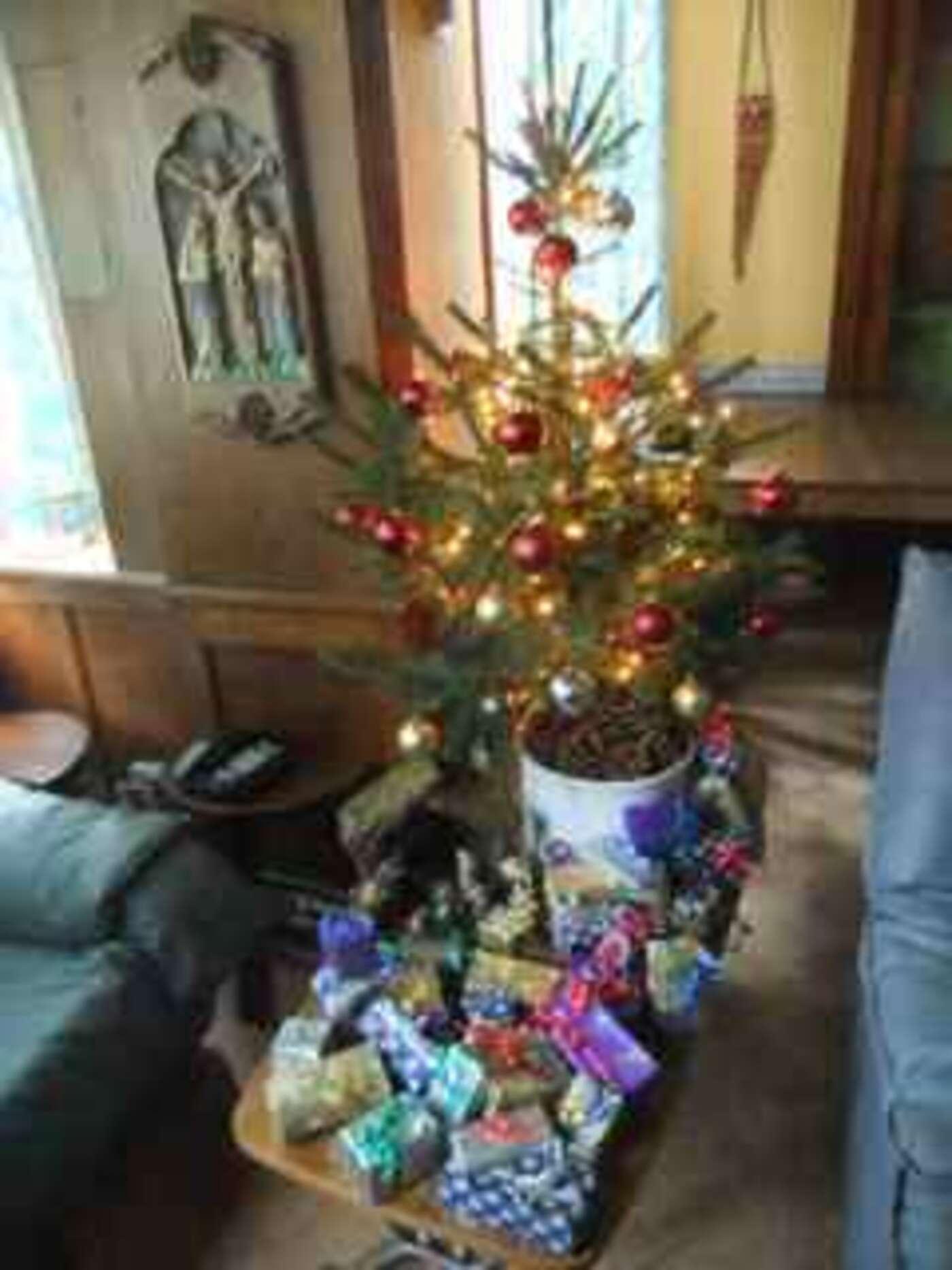Bier Weihnachtsbaum.Weihnachtsbaum Hasselt Dvd Abend Wochenende Youthreporter
